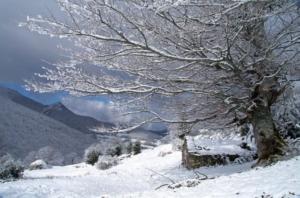 Braña Las Cadenas (Teberga) Foto: Ástur Paredes